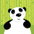 roleta: Black and white panda bear on bamboo background