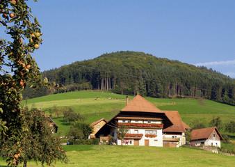 Schwarzwälder Bauernhof