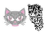 Leopardo e Gato poster