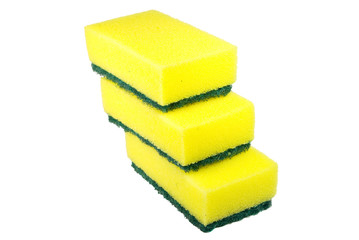 green and yellow sponges
