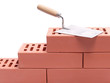 Brick wall and trowel - 23176576