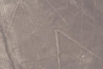 Líneas de Nazca, Araña
