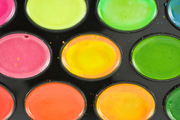 variety concept. close-up of watercolor paint tray