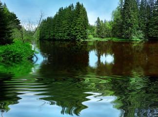 dark river in mountain forest