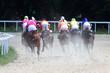 Horse racing.