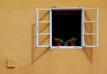 Пражское окно
