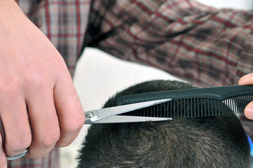 Barber cutting hair with scissor