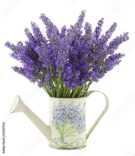 Fotobehang Lilac Profumo di Lavanda
