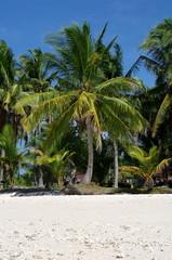 Philippines, Cebu - Virgin Island beach nb.9