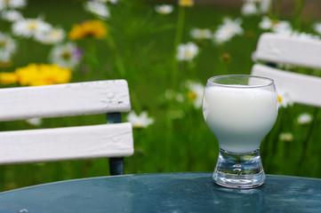 verre de lait et chaises au jardin