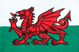 Welsh Flag (Wales) poster