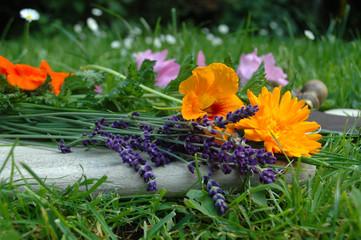 Brett Kräuter Lavendel