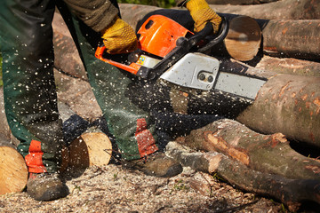 cutting logs with a chainsaw