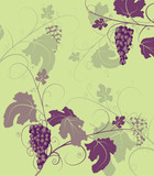 grapevine background with bunches and leaves