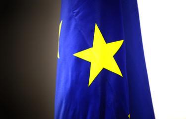 Bandera cee