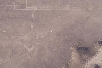 Colibrí, Líneas de Nazca