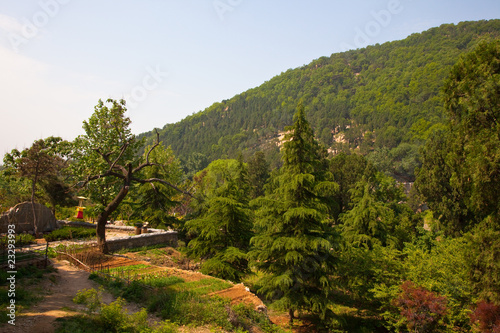 mountain dwelling landscape