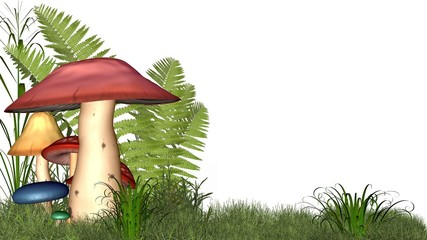 Fairy toadstools on white with copyspace
