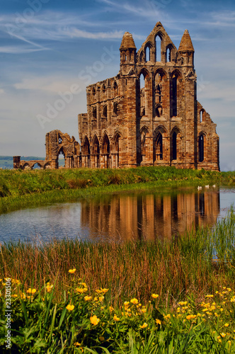 View of Whitby Abbey beyond the pond