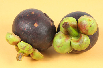 Two whole  mangosteen