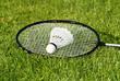 Badminton VII