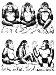 See no evil, hear no evil, speak no evil with variation