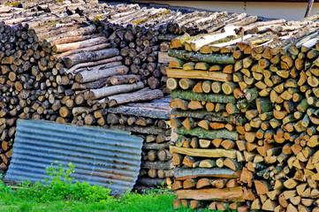 Buches de bois dans un pré.