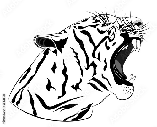 Tiger, tattoo