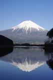 Fototapety Mt.Fuji and Lake Tanuki