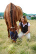 Pferde 122