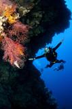 scuba diver on drift dive poster
