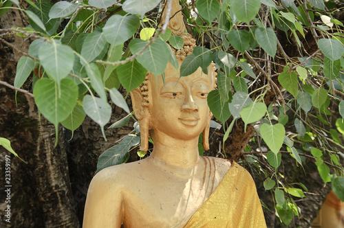 canvas print picture Buddhaskulptur