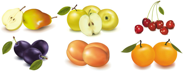 Vector. Pears, apples, peaches, plums and cherries.
