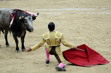 Matador on Knees Before Bull