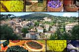 Fototapety La Provence