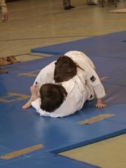 Llave de judo
