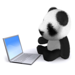 3d Teddy sits at his computer