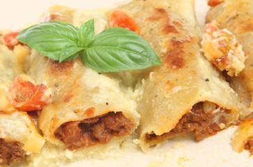 Canneloni Pasta
