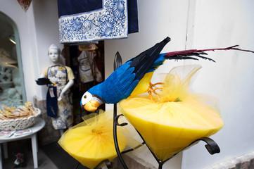 pappagallo di carta