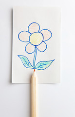 scketch of flower over a pencil