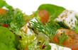 salade 14