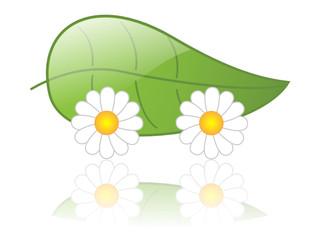 ECO CAR icon (green electric renewable energy sustainable)