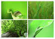 canvas print picture - montage vert B