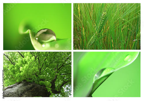 canvas print picture montage vert B