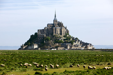 The Mont-St-Michel, France, sheep in foreground