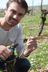 Portrait d'un viticulteur