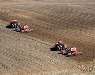 Two tractors sowing