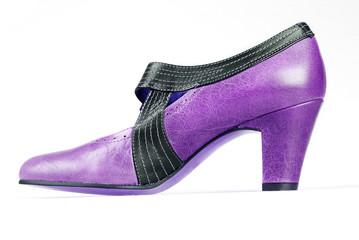 blue vintage shoe