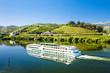 cruise ship at Peso da Regua, Douro Valley, Portugal - 23449951