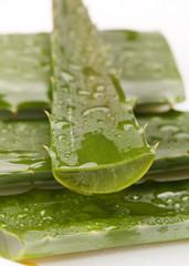 extract of aloe
